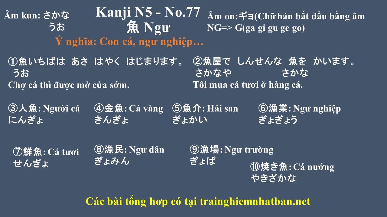 Kanji n5 chữ Ngư 魚 - No.77